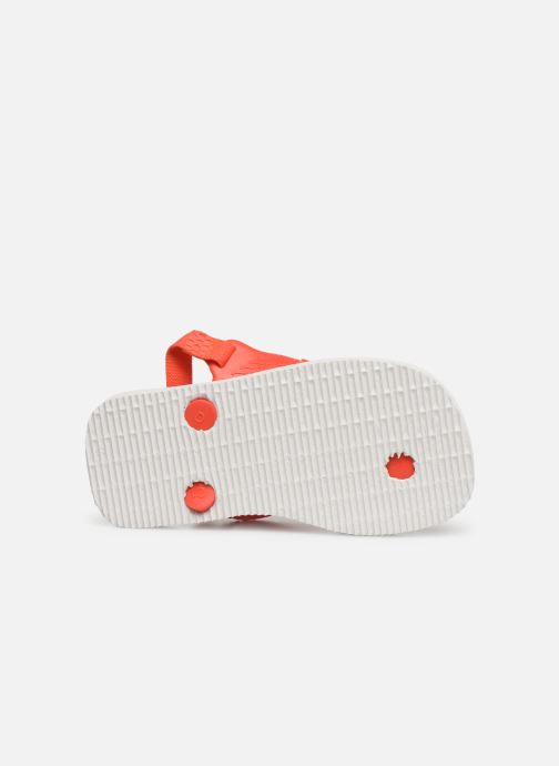 Slippers Havaianas Baby Pets Rood boven