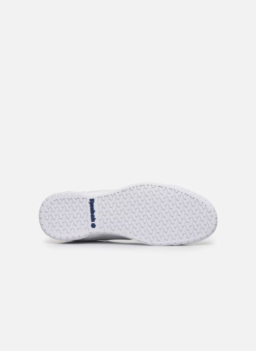 Baskets Reebok Exofit Lo Clean Logo Int Blanc vue haut