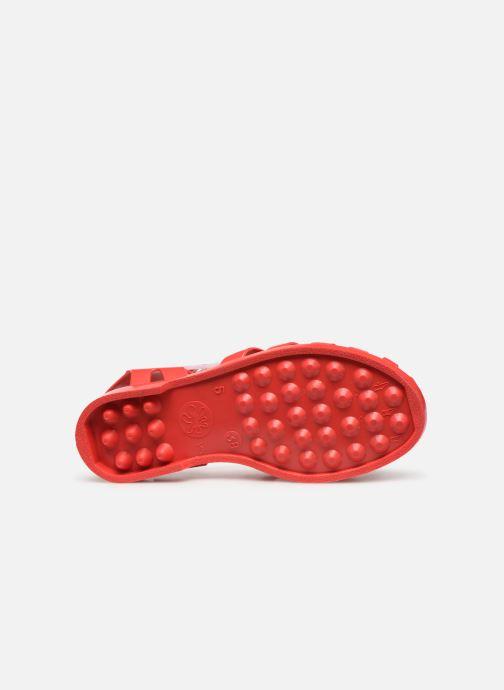 Chaussures de sport Méduse Sun W Rouge vue haut