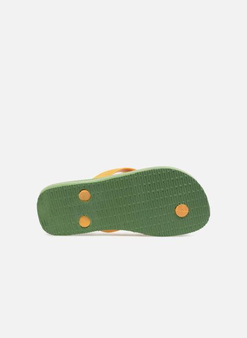 Slippers Havaianas Brasil Logo E Groen boven
