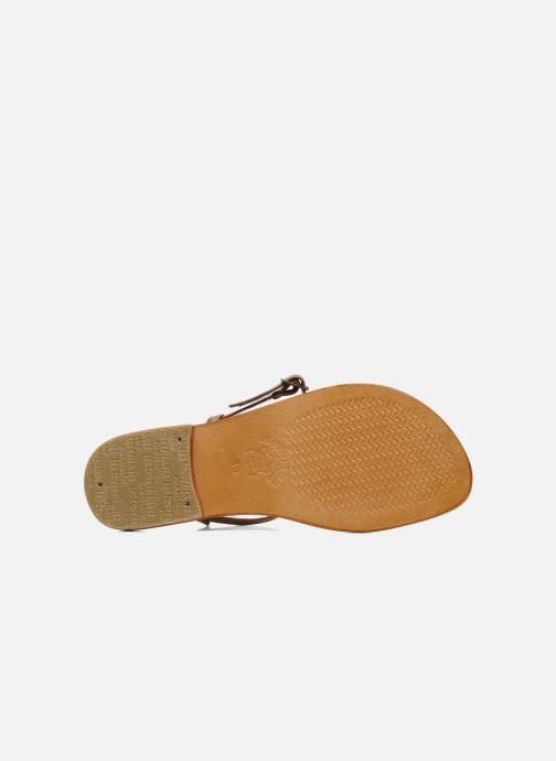Sandales et nu-pieds Les Tropéziennes par M Belarbi Narvil Marron vue haut