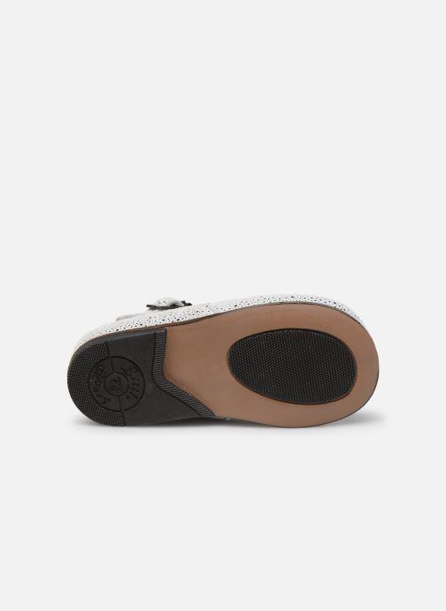 Stiefeletten & Boots Little Mary Floriane weiß ansicht von oben