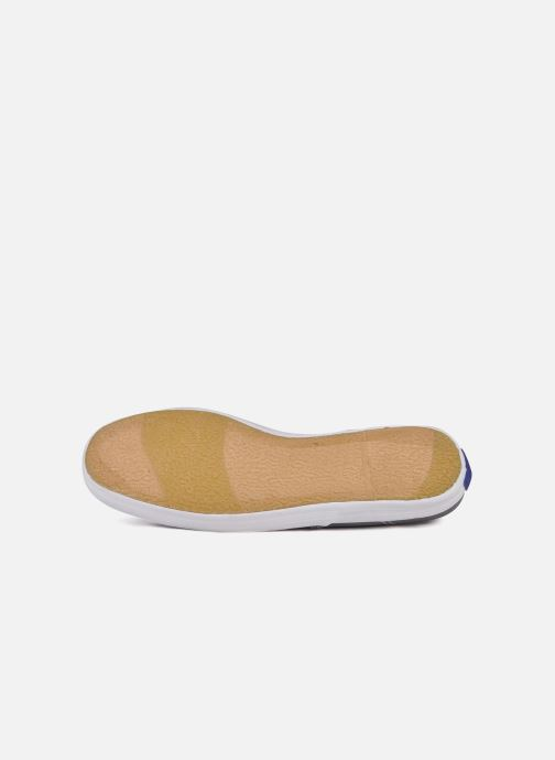 Sneakers Keds Champion Canvas Grijs boven