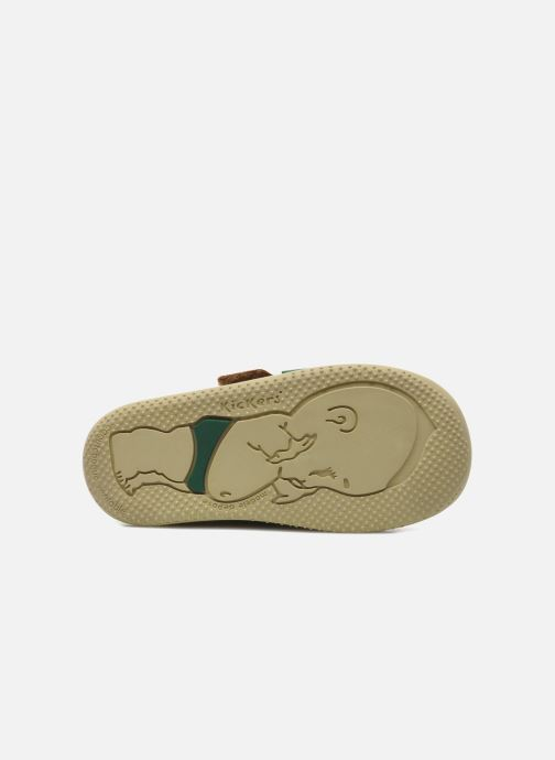 Chaussures à scratch Kickers Bilou Marron vue haut