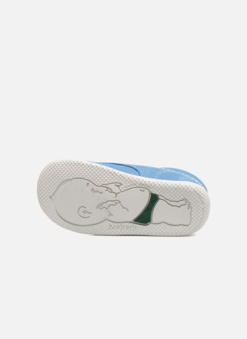Zapatos con velcro Kickers Bilou Azul vista de arriba