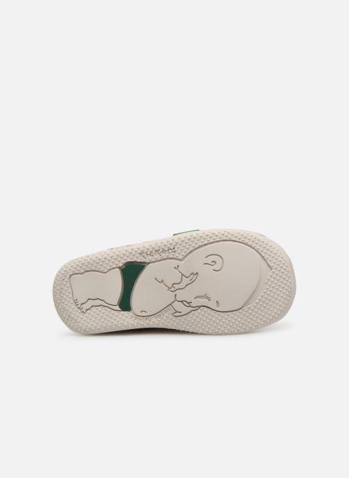 Chaussures à lacets Kickers Billy Blanc vue haut