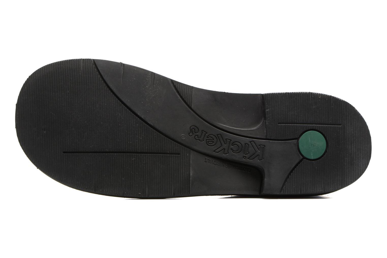 Chaussures à lacets Kickers Kick color perm Gris vue haut