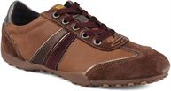 Lt brown brown