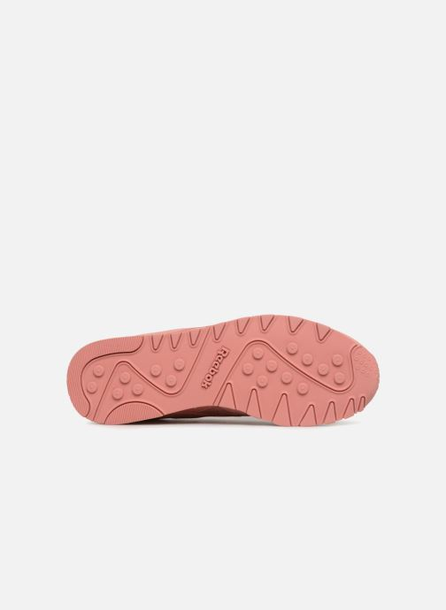 Trainers Reebok Classic Nylon W Pink view from above
