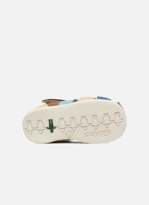 Sandali e scarpe aperte Kickers Babysun Marrone immagine dall'alto