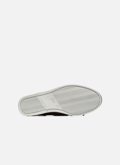 Zapatos con cordones TBS Phenis EW Marrón vista de arriba