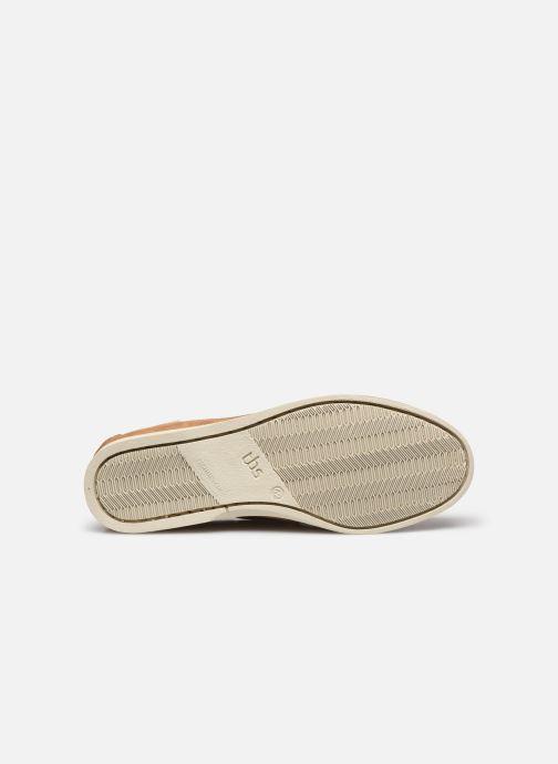 Zapatos con cordones TBS Phenis EW Beige vista de arriba