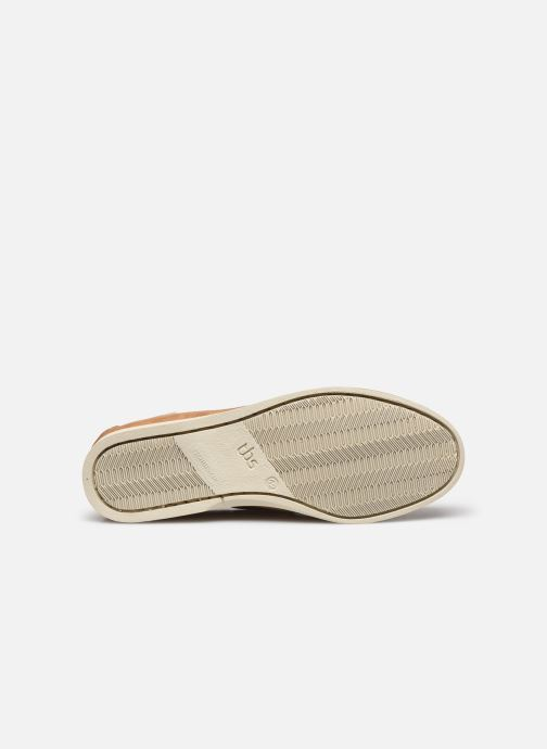 Chaussures à lacets TBS Phenis EW Beige vue haut