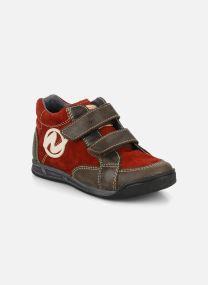 Sneakers Barn Rilo