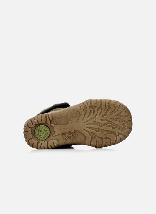 Boots en enkellaarsjes Noël Mini fizz Bruin boven