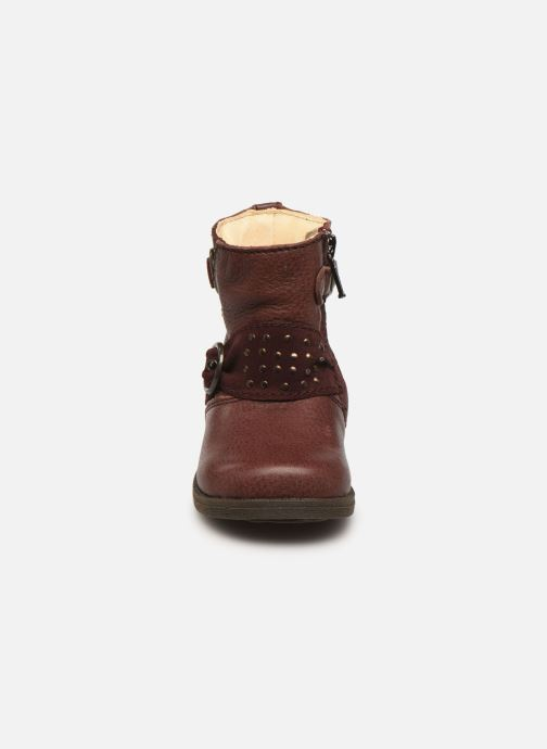 Ankle boots Primigi Corinna Burgundy model view