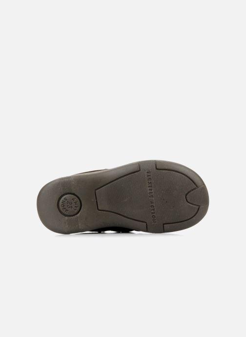 Zapatos con velcro Primigi Rusty Marrón vista de arriba