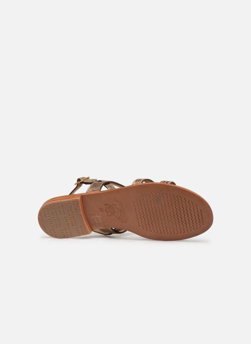 Sandals Les Tropéziennes par M Belarbi Hilda Bronze and Gold view from above