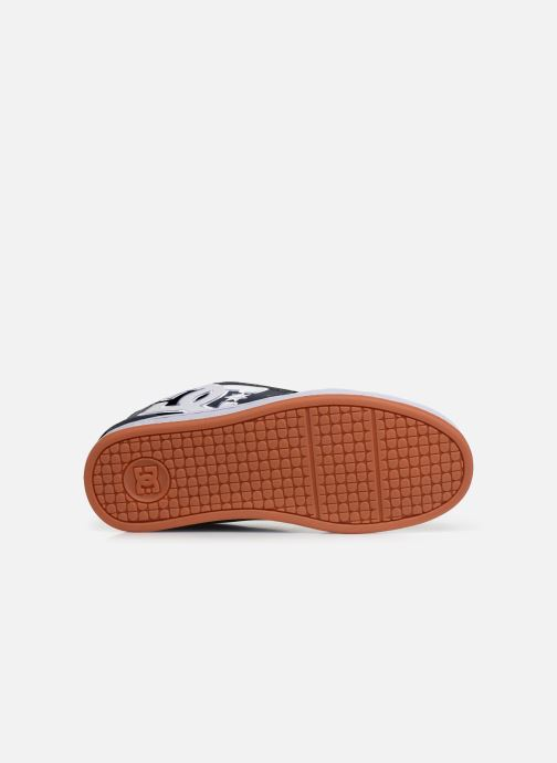 Sport shoes DC Shoes Net Blue view from above
