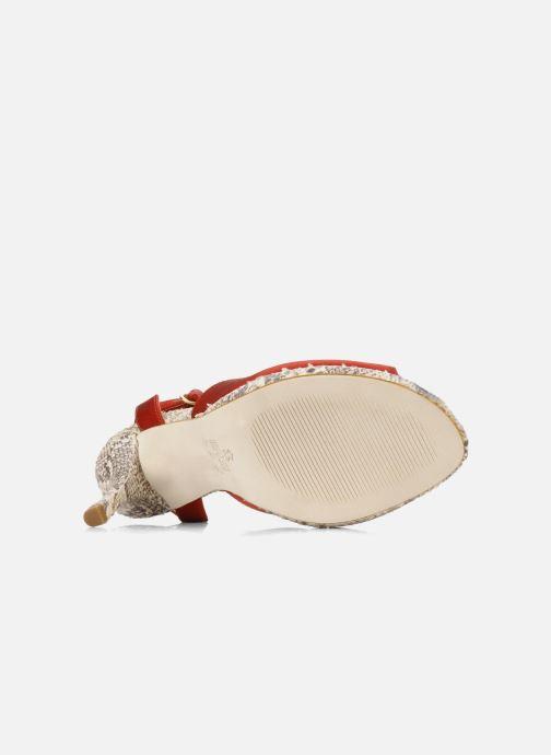 Sandali e scarpe aperte Studio TMLS Galine Rosso immagine dall'alto