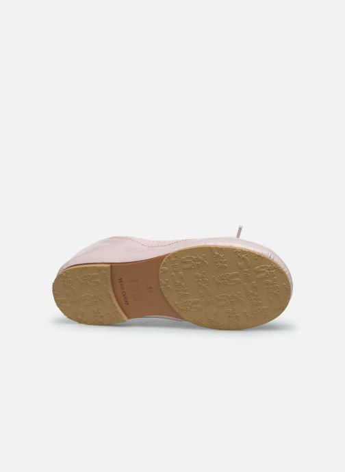 Ballet pumps Bloch Toddler Cha cha Pink view from above