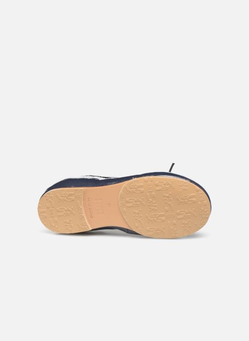 Ballet pumps Bloch Toddler Cha cha Blue view from above