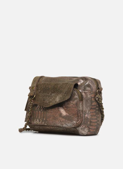 Bolsos de mano Pieces Naina Leather Crossover Oro y bronce vista del modelo