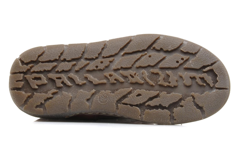Bottines et boots Palladium Botto Mix Bordeaux vue haut