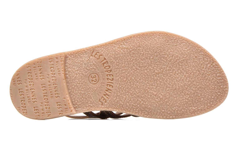 Sandals Les Tropéziennes par M Belarbi Mangue E Bronze and Gold view from above