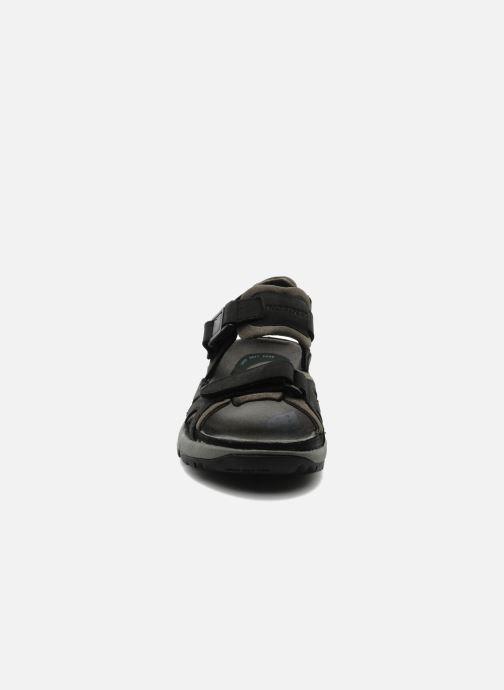 Chaussures de sport ALLROUNDER Alligator Noir vue portées chaussures