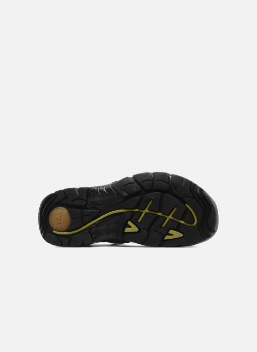 Chaussures de sport ALLROUNDER Alligator Noir vue haut