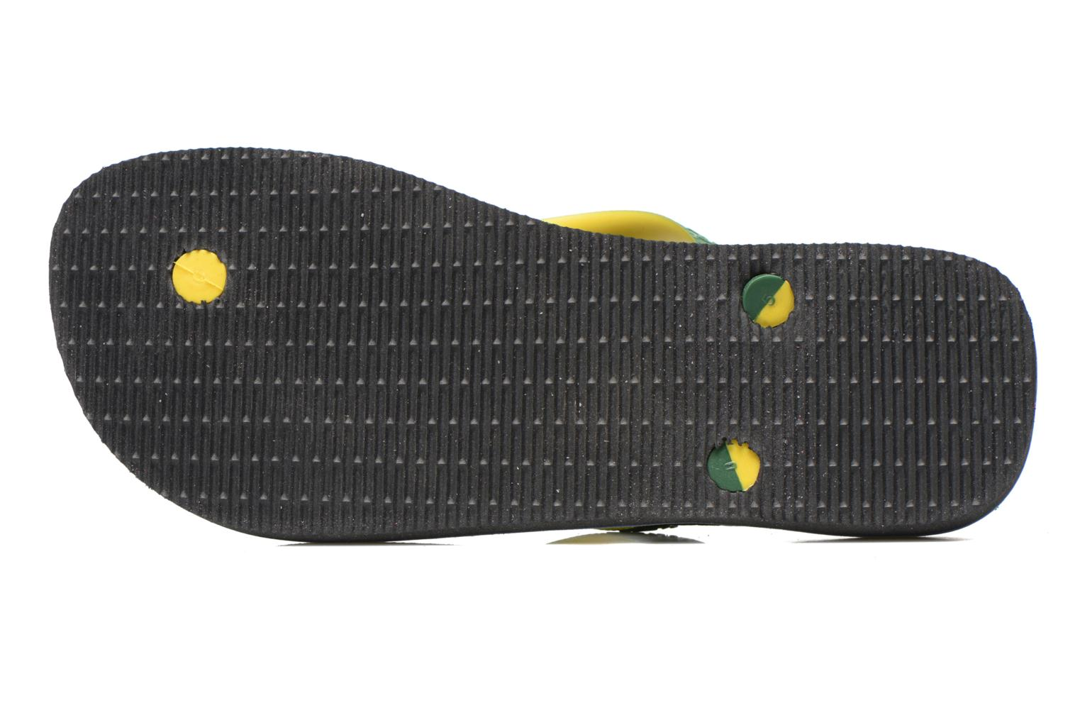 Flip flops Havaianas Brasil Mix H Green view from above
