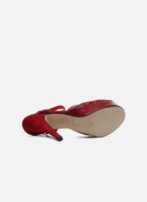 Sandales et nu-pieds Terry de Havilland MARGUERITE SNAKE Rouge vue haut