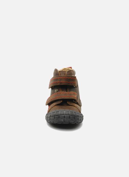 Zapatos con velcro Babybotte Aligator Marrón vista del modelo