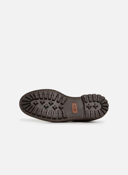 Zapatos con cordones Clarks Montacute Wing Marrón vista de arriba