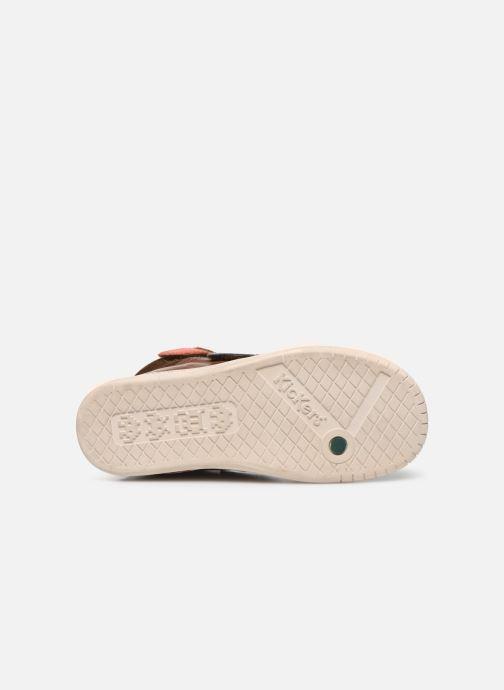 Chaussures à scratch Kickers Winsor Marron vue haut