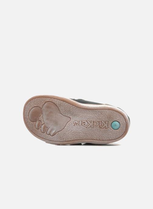 Chaussures à scratch Kickers TRAPEZE Vert vue haut