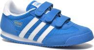 Sneakers Børn Dragon Cf C