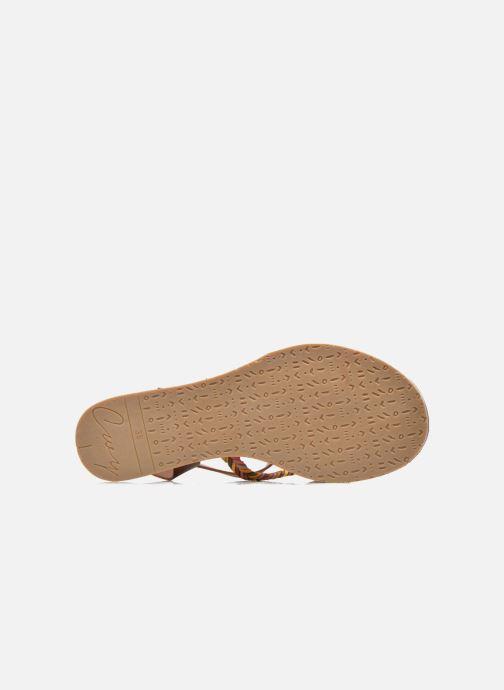 Sandales et nu-pieds Coolway MELROSE Marron vue haut