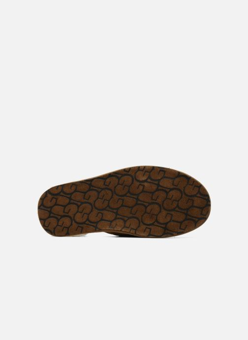 Pantofole UGG Scuff Marrone immagine dall'alto