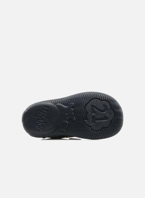 Sneakers Primigi Rupert-1 Azzurro immagine dall'alto