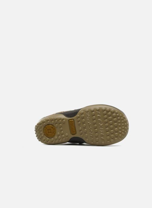 Sneaker Primigi Gasp braun ansicht von oben