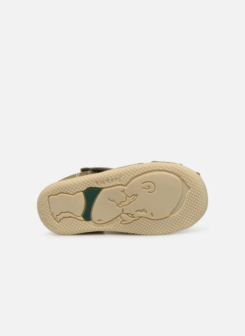 Sandalen Kickers BIGBAZAR grün ansicht von oben