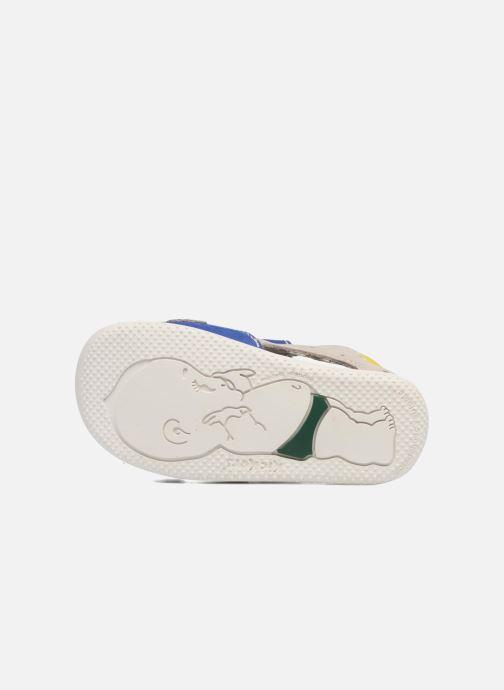 Sandales et nu-pieds Kickers BOPING Bleu vue haut