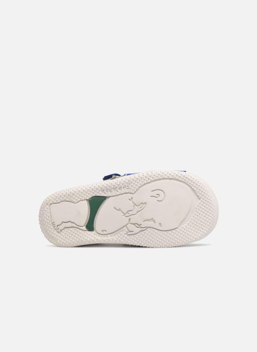 Sandali e scarpe aperte Kickers BOPING Azzurro immagine dall'alto