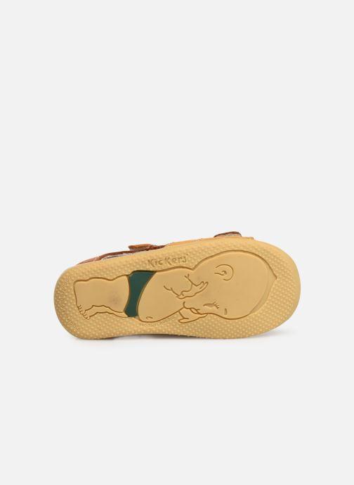 Sandali e scarpe aperte Kickers BOPING Marrone immagine dall'alto