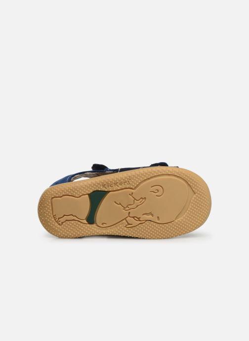 Sandalen Kickers BOPING blau ansicht von oben