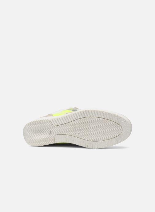 Sneakers Ninette en fleurs 7010 Multi se foroven