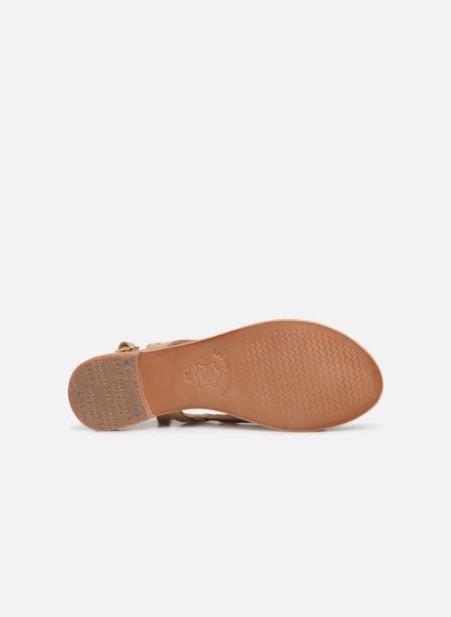 Sandals Les Tropéziennes par M Belarbi Isatis Bronze and Gold view from above