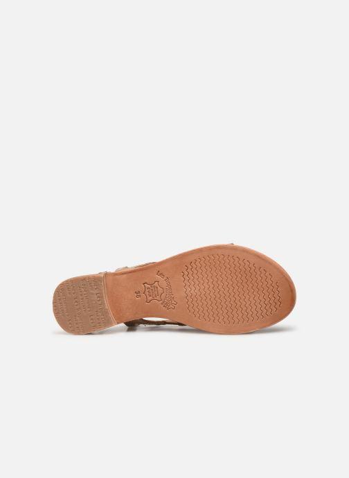 Sandales et nu-pieds Les Tropéziennes par M Belarbi Isatis Marron vue haut